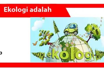 Ekologi: Pengertian, Prinsip, Manfaat, Jenis, dan Contoh